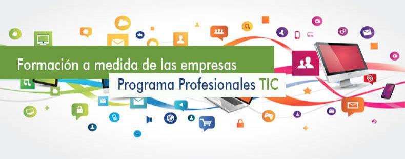 Profesionales TIC