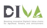 DIVA Project Logo